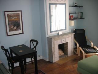 Quiet Artsy 1 Bedroom in Vibrant Bastille Area - 11th Arrondissement Popincourt vacation rentals