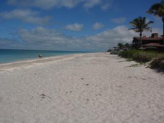 GULF OF MEXICO CONDO ~ WALK OUT ONTO THE BEACH! - Englewood vacation rentals