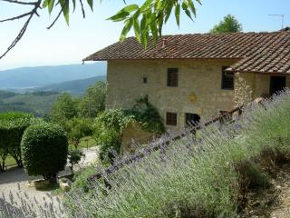 LUXURY VILLA on the hill of Florence - Tuscany vacation rentals
