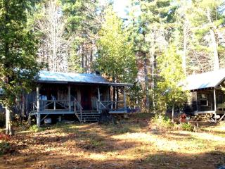 Charming Lakefront Cabin, Great View, Private Dock - Kennebec vacation rentals