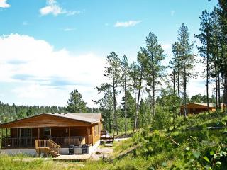THE ASPEN - Black Hills and Badlands vacation rentals