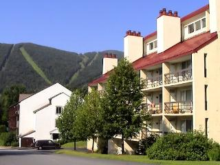 Not Your Typical Mountainside Condo - Sugarbush-Mad River Valley Area vacation rentals