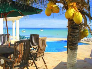 Affordable Sea Front Villa Family and Pet Friendly - Chicxulub vacation rentals