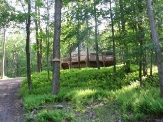 Poconos Chalet, Lots Of Decks/Outdoor Jacuzzi - Pocono Lake vacation rentals