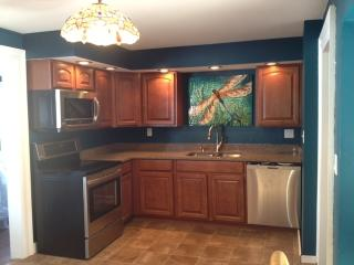 Dragonfly Lake House, Oneida Lake - Central - Leatherstocking vacation rentals