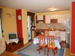 Apartemt in quiet and green city area - Bosnia and Herzegovina vacation rentals
