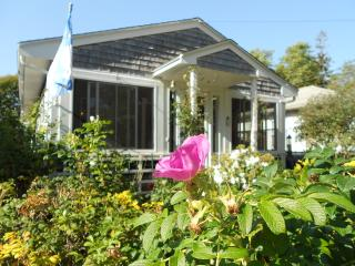 Beach Cottage with Amazing Outdoor Space - South Shore Massachusetts - Buzzard's Bay vacation rentals
