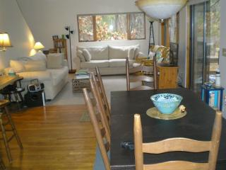 Contemporary 4  Bedrm Cape Cod National Sea Shore - Wellfleet vacation rentals