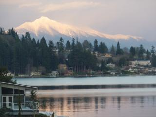 Breathtaking LakeMtn View Waterfront guest retreat - Lake Stevens vacation rentals