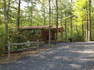 Raystown Lake Country Log Cabin (Red Roof Cabin) - Huntingdon vacation rentals