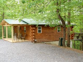 Raystown Lake Country Log Cabin (Green Roof Cabin) - Allegheny Mountains vacation rentals