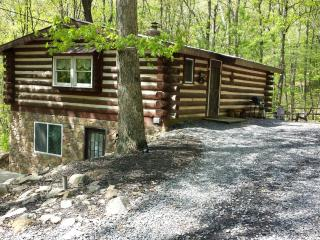 Raystown Lake Country Log Cabin (Brown Roof Cabin) - Allegheny Mountains vacation rentals