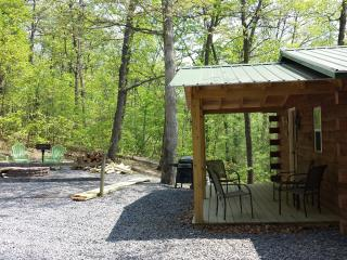 Raystown Lake Country Log Cabin (Green Roof Cabin) - Huntingdon vacation rentals
