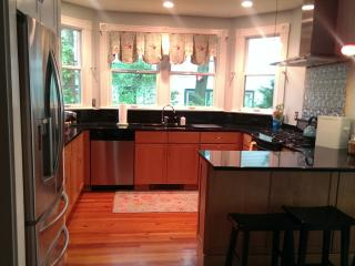 Beautiful family vacation home - 1 light to DC! - Northern Virginia vacation rentals