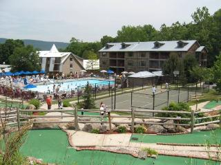 Berkshires Resort Apartment - Berkshires vacation rentals