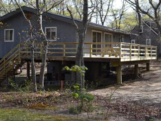 Private yet Close to the Action - Oak Bluffs vacation rentals