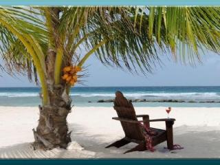 Bird of Paradise Luxury Rental - Crystal Beach vacation rentals