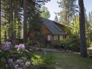 Cozy Mill Creek Home - Incline Village vacation rentals