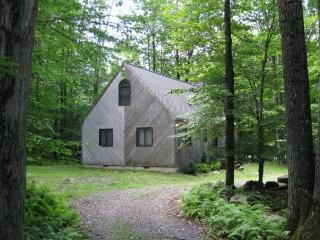 INCREDIBLE WATERVIEW POCONOS VACATION RENTAL - Pennsylvania vacation rentals