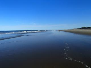 OCEANFRONT!   North End With Fabulous Ocean View - Virginia vacation rentals