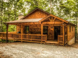 Brand New Cabin! - Aska Woodlands - Blue Ridge vacation rentals