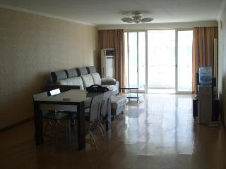 Amazing 3 Br apartment . 8500Rmb in wudaokou .Near Blcu Tsinghua .peking university . - Beijing vacation rentals