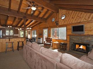 Luxury Cabin in the woods @ Lake Tahoe w/ Hot Tub - Carnelian Bay vacation rentals