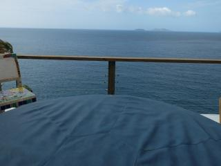 Luxury Loveshack w/Private Hotub On The Water! - Saint Thomas vacation rentals