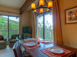 311 Storm Meadows Club B - Steamboat Springs vacation rentals