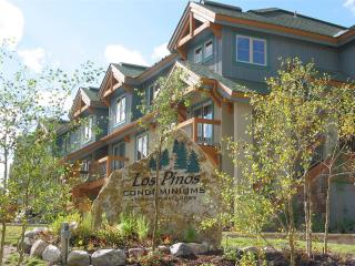 Los Pinos 23A - Breckenridge vacation rentals