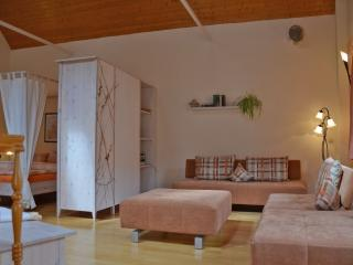 LLAG Luxury Vacation Apartment in Pirna - 969 sqft, high-quality furnishing, historic (# 2485) - Pirna vacation rentals