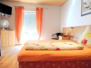 Single Room in Rodenbach (Palatinate) - 269 sqft, comfortable, modern, quiet (# 3339) - Rodenbach vacation rentals