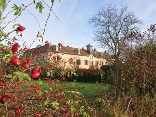 Chateau de Gressoux is a rugged farm - Franche-Comte vacation rentals