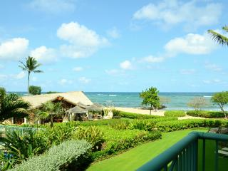 PRIME**OCEAN AND POOL VIEWS**TRADE WINDS**H204 - Kauai vacation rentals
