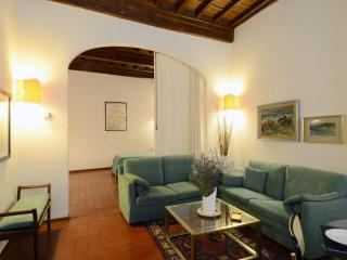 Piazza Pitti-Velluti apartment - Florence vacation rentals