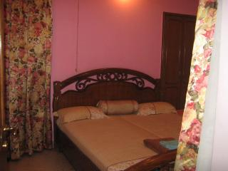 The Ashram - National Capital Territory of Delhi vacation rentals