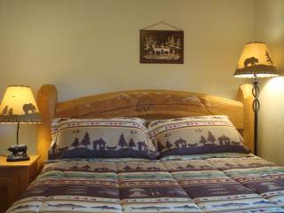 RUSTIC CABIN IN MNT TOWN HOT SPRINGS/WATER RAFTING - Idaho Springs vacation rentals