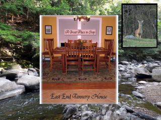 ADK Tannery House- NEW LIST - North Creek vacation rentals