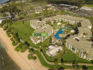 SPECIAL** Prime OCEAN view** AVIS car included & One FREE night!   Book NOW!! - Kapaa vacation rentals
