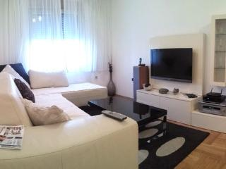 Next to Rimski trg, 1bdr apartment - Podgorica vacation rentals