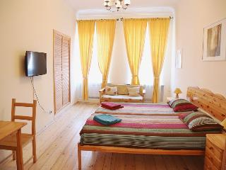 Flat in City Center - Saint Petersburg vacation rentals