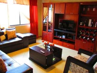 New Apartment For Rent - Cuenca vacation rentals