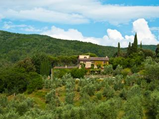 Le Valle Villa - Exquisite 16th Century farmhouse - Strada in Chianti vacation rentals