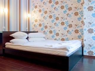 Modern new apartment in the very heart of Kiev city centre. - Kiev vacation rentals