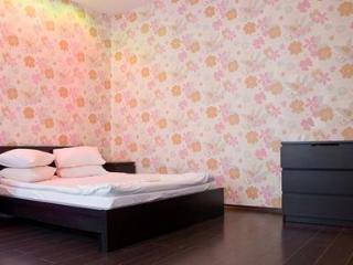 Funky apartment in the very heart of Kiev city centre. - Kiev vacation rentals
