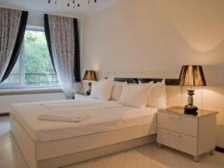 Luxurious one-bedroom apartment - Ukraine vacation rentals