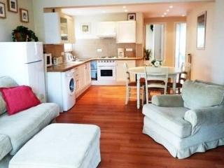 Two bedroom apartment in Palm Beach - Cannes vacation rentals