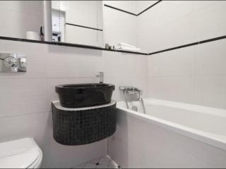 Beautiful Studio Apartment in the Centre of Warsaw - Poland vacation rentals