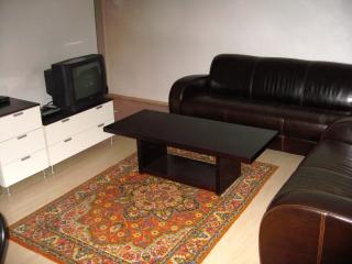 Liivalaia 1 Bedroom At Ground Floor - Tallinn vacation rentals