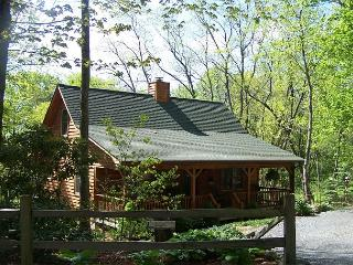 Whistle Stop is a perfect cabin in the woods, located on Appalachian Ski Mtn. - Blowing Rock vacation rentals